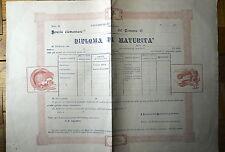 Diploma di maturità non compilato Adernò Sicilia inizio 1900