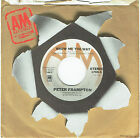 "PETER FRAMPTON - SHOW ME THE WAY - 7"" 45 VINYL RECORD - 1976"