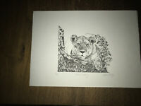 Signed by Glenn Irving LE 100 print of pencil sketch single lion in bushes