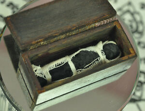 Spirit Coffin voodoo Skull doll Prai ghost Talisman magic Top Thai Lucky Amulet