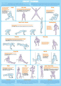 Exercise Poster Circuit Training Fitness Chart