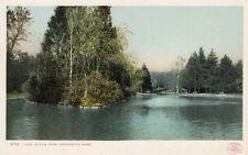Antique POSTCARD c1906 Lake in Elm Park WORCESTER, MA MASS. Unused 13227