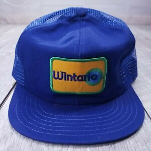 Vintage Wintario Lottery Game Show Patch Trucker Hat Cap Snapback Blue Victory