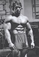 "Arnold Schwarzenegger Inspiration Bodybuilding poster 32"" x 24"" Decor 73"