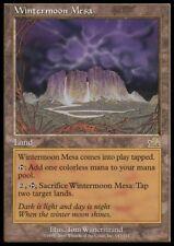 Mtg 4x Wintermoon mesa-Prophecy * rare país pl *