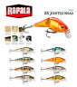 Rapala BX® Jointed Shad Fishing Lure 6cm 7g Various Colours