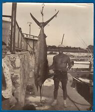 large vintage photo fisherman 87 pounds swordfish fish pescador foto Cuba 1958