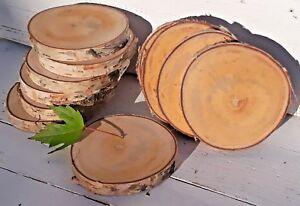 WHOLESALE 2-10CM Birch Wood Log Slices Discs Round Wedding Rustic ECO Crafts