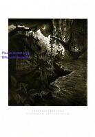 Geisterstunde XL Druck 1929 W Breuer * Heilbronn Zauberer Zauberwald Gespenst +