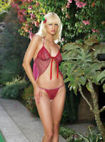 Leg Avenue Lingerie Two Piece Embroidered Heart Trim Lace Cup Babydoll, One Size
