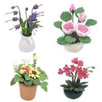 Mini Dollhouse Miniature Plant Green Flower in Pot Fairy Garden Accessory O8U4