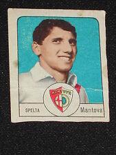 ***NANNINA CARTONATA 1966/67*** SPELTA (MANTOVA)