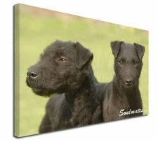 More details for patterdale terrier dogs 'soulmates' x-large 30