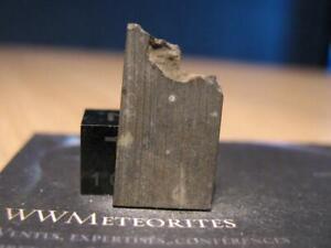 Meteorite NWA 13246 - Carbonaceous Chondrite : CK3