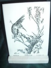 Montana Marble Decorative Plaque Desk Accessory Cultured Etched Hummingbirds8028