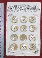 Superbe boutons anciens en Nacre sur plaquette - Made in France Mode de Paris