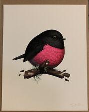 "MIKE MITCHELL Pink Robin Fat Bird BLACK BOX PRINT 8""x10"" NUMBERED   / 1111"