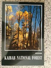 POSTCARD UNUSED ARIZONA, KAIBAB NATIONAL FOREST IN THE FALL CARD # 2