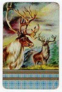 Swap Card Genuine Coles Un named Deer/Stags. Average condition.