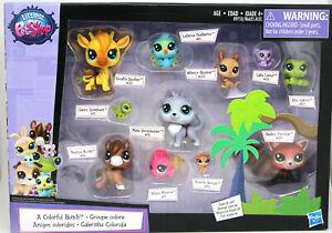 NEW Littlest Pet Shop Lps A Colorful Bunch