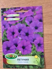 Petunia x Hybrida Hybrid Purple Hanging basket Curbs Planters 500 seeds