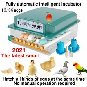 32 Eier Inkubator Vollautomatische Digital Brutmaschine Brutapparat Brutautomat