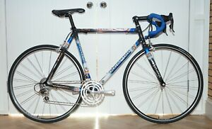 56CM COLNAGO C40 CARBON DREAM STAY ROAD BIKE CAMPAGNOLO RECORD TRIPLE GROUPSET