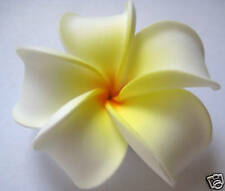 Hawaiian Hawaii Flower Bridal Wedding Favor Party Plumeria QTY ( 2 ) Hair Clips