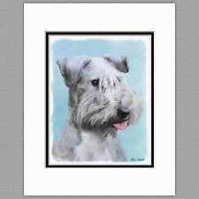Cesky Terrier Dog Original Art Print 8x10 Matted to 11x14