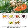 Obstpflücker Obsternter Obstsammler Apfelpflücker ABS Werkzeug Tragbar DE