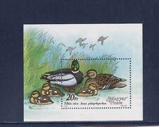Hongrie  bloc  faune oiseaux canards    1988  num: BF 200  **