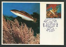 France MK 1978 Port Cros pesci corallo FISH Capecchi carte MAXIMUM CARD MC d5485