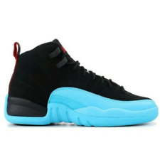 Jordan 12 Retro gamma blue 2013