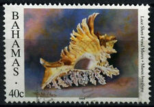 "Bahamas 1996 SG#1064, 40c Sea Shells Definitive ""1996"" Imprint Date Used #D42967"