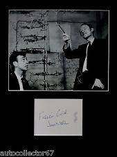 Francis Crick James D Watson AUTOGRAPH PHOTO DISPLAY DNA Scientists Biology