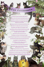 Funny Poster CAT COVENANTS, cat, kitten pet print 20 x30 gift