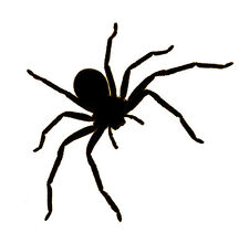 Spider (Crawling) - Wall/Laptop/Car - Vinyl Decal/Sticker - Free Post