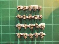 Warhammer 40K - 20 Human skulls with jaws Base decor - 40k bits