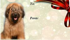 Briard Dog Self Adhesive Gift Labels by Starprint