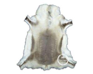 Reindeer hide Rug - Beautifull Hide High Quality Code: R14