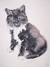 Signed original watercolour painting of a black and white kitten cat