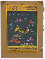 Old Paper Painting Indian Art Painting Birds Water Color Hand Painted Miniature