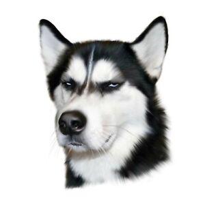 Personalised Custom Pet Dog Cat Portrait Realistic Funny Gift Digital copy