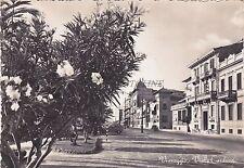 VIAREGGIO - Viale Carducci