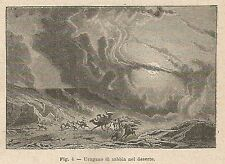 A2265 Uragano di sabbia nel Sahara - Xilografia - Stampa Antica 1895 - Engraving