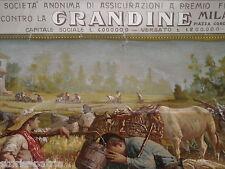 AGRICOLTURA_FRUMENTO_ASSICURAZIONE GRANDINE_GENERALI_PUBBLICITARIA_CALENDARIO