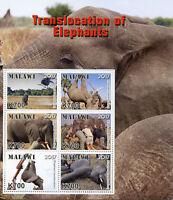 Malawi 2017 MNH Translocation of Elephants 6v M/S Elephant Wild Animals Stamps