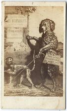 photo cdv curiosité pub / V. Hugo Les Misérables / chien et singe Paris 1865