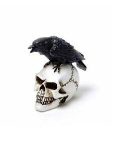 Alchemy Ornament Miniature Collectables Raven Skull 2.2x4.2x4.1cm