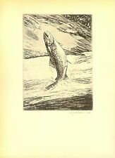 1937 Vintage Schaldach Fish Print ~ Sunny Run ~ Signed In ~ Brown Trout